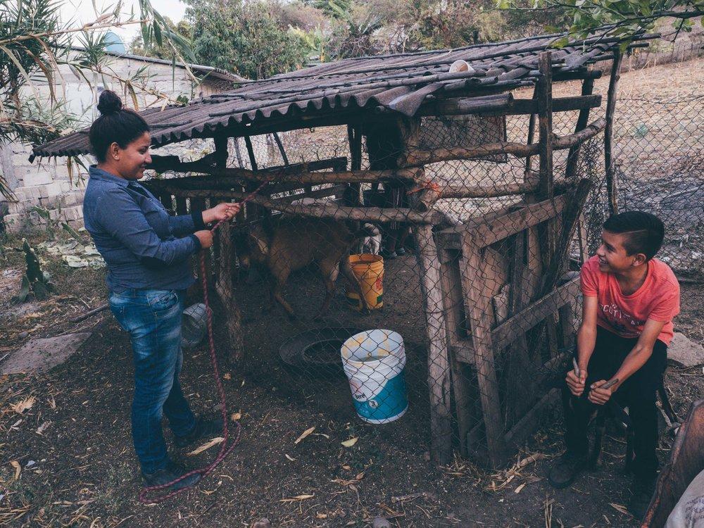 Dec.+27+Mexico_1761.jpg