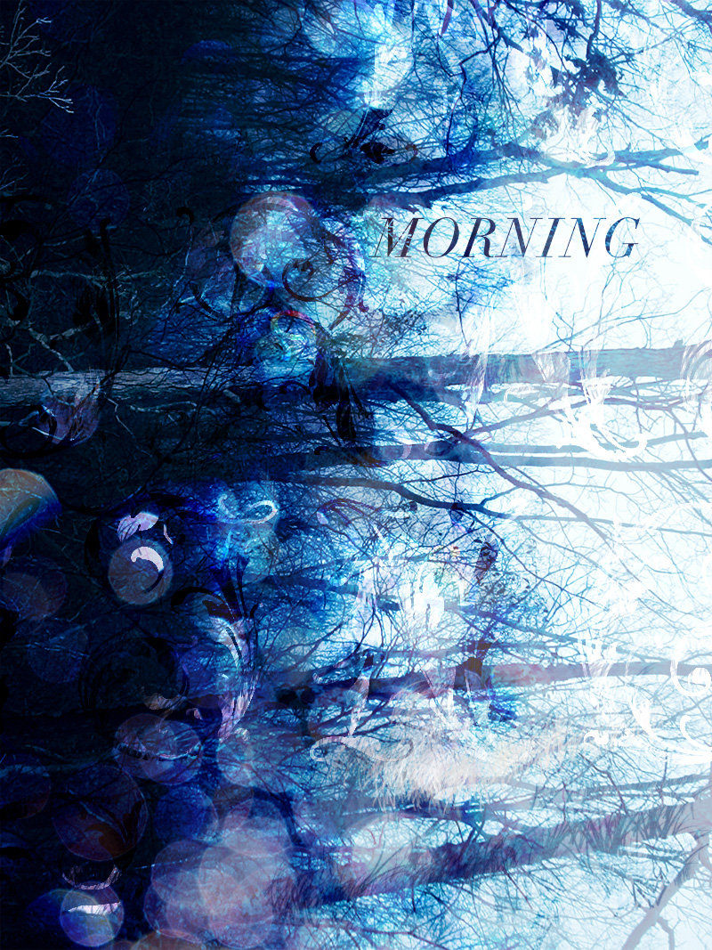 Mickey Theis | Morning