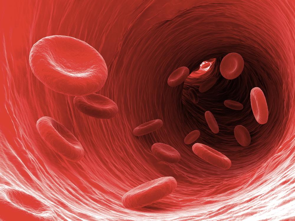 BloodViscosity.jpg