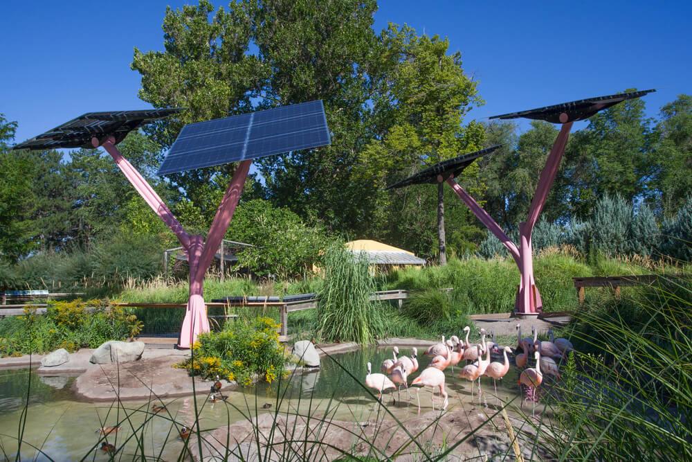 Tracy Aviary - Utah