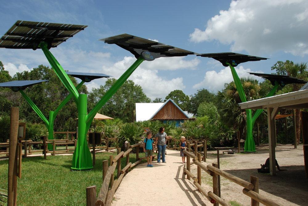 Kangaroo zoo 2.JPG