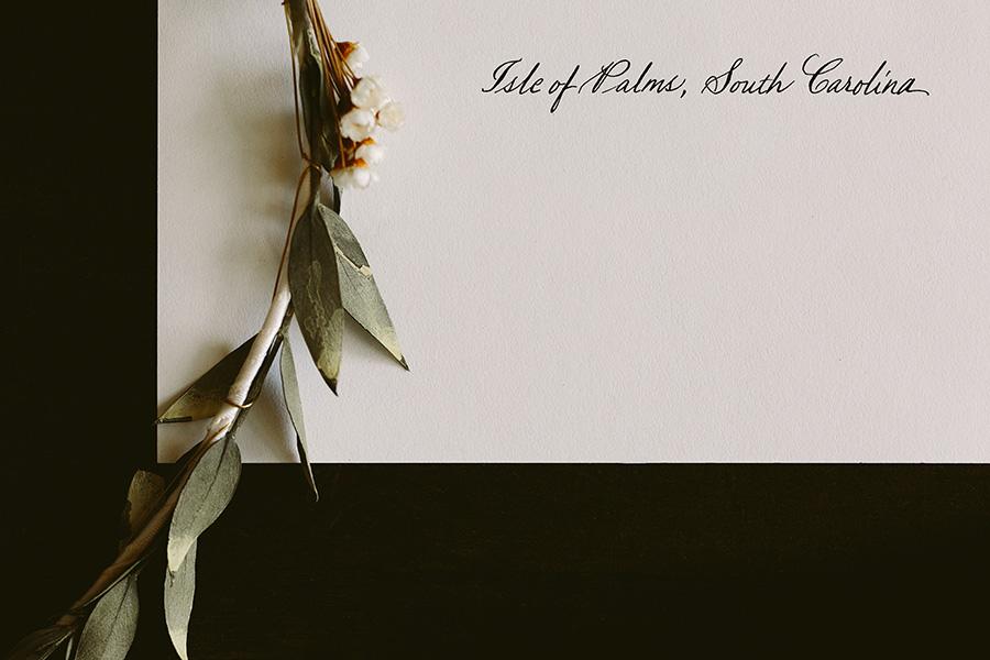 DavisWedding - Alicia White Photography-33.jpg