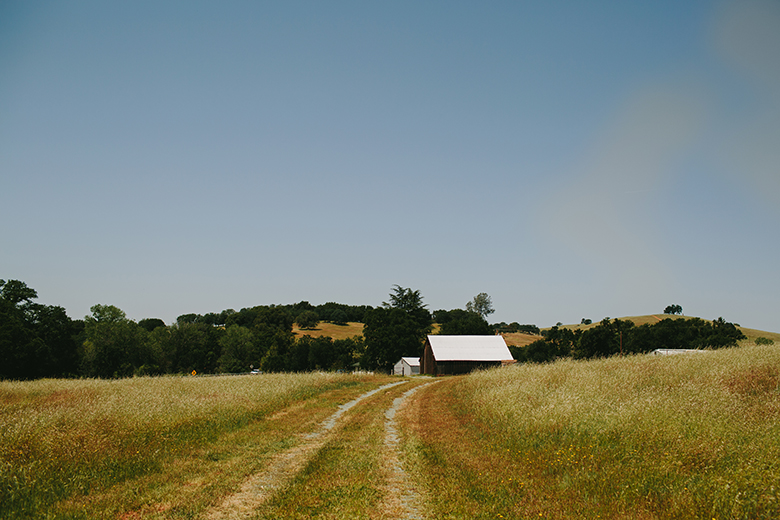 Lehman-Barn-Wedding-California-5-copy.jpg