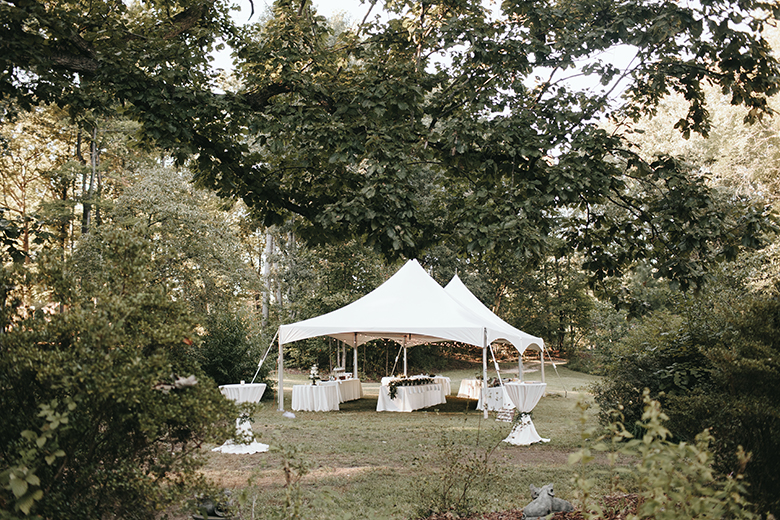 north carolina backyard wedding 75.JPG