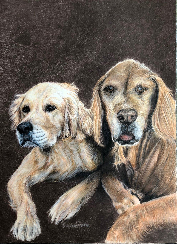 Colored Pencil Portrait. Sold