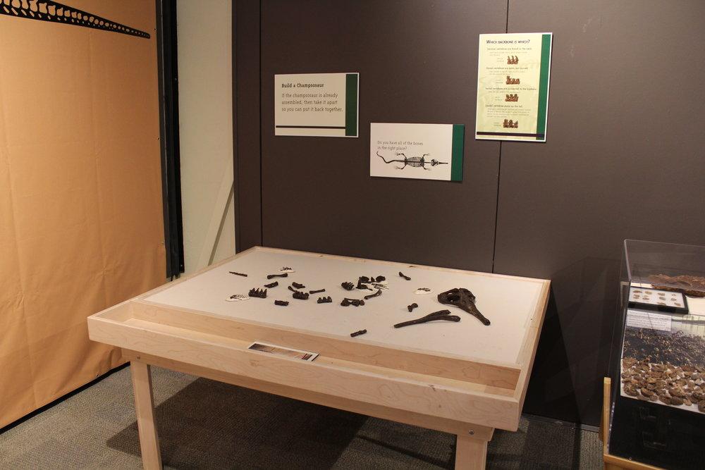 Minnesota Discovery Center temp exhibit tables 001.JPG