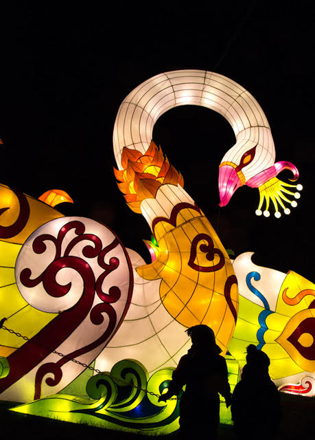 Lantern Festival 7