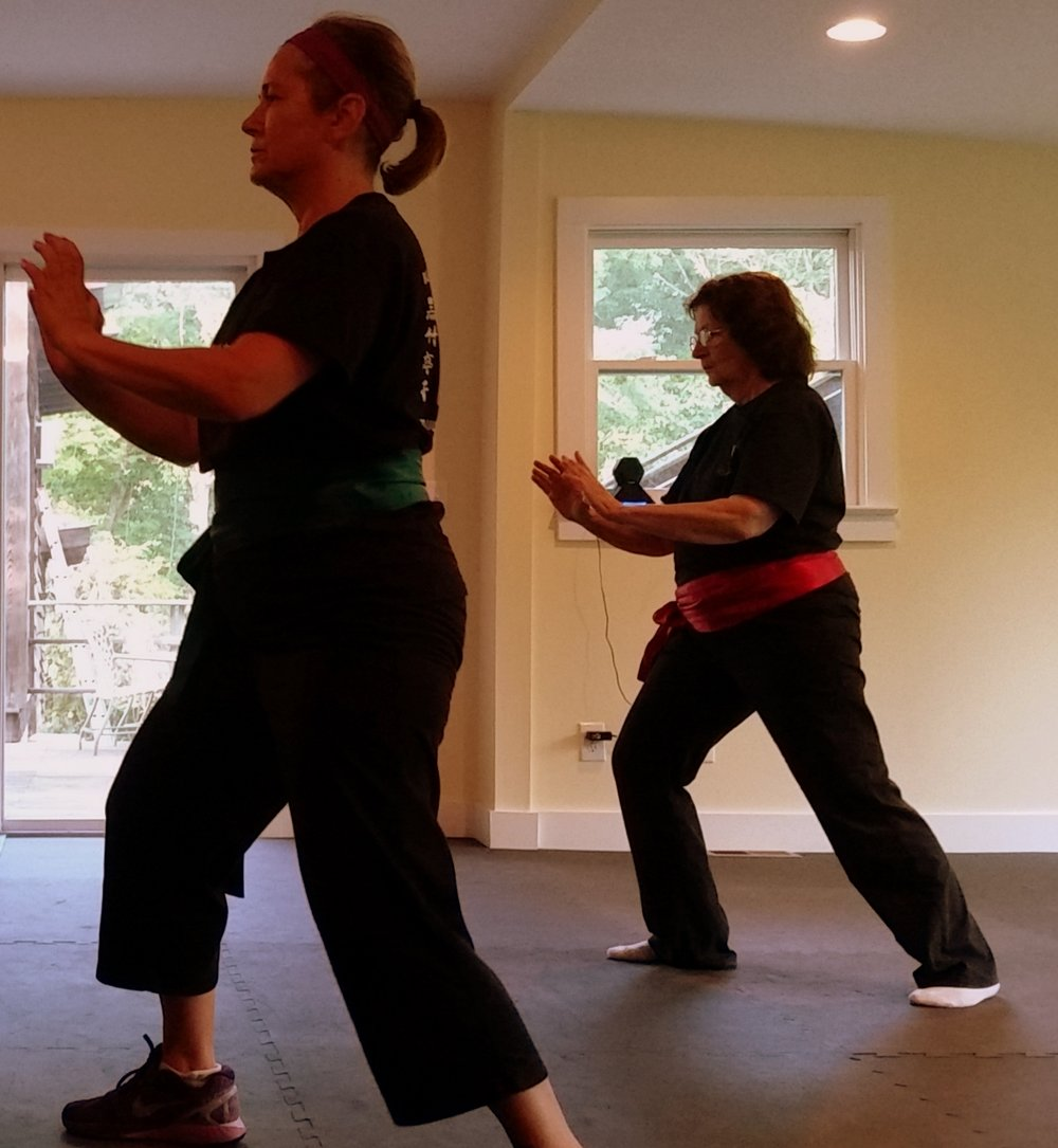 tai chi push Desiree Goldman
