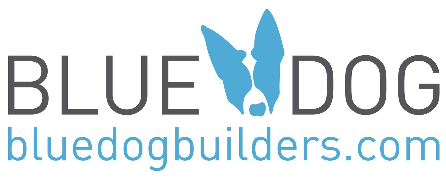 BLUEDOG design | build