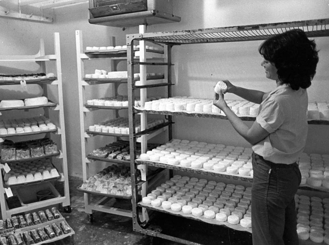Laura Chenel in the aging room - circa 1979