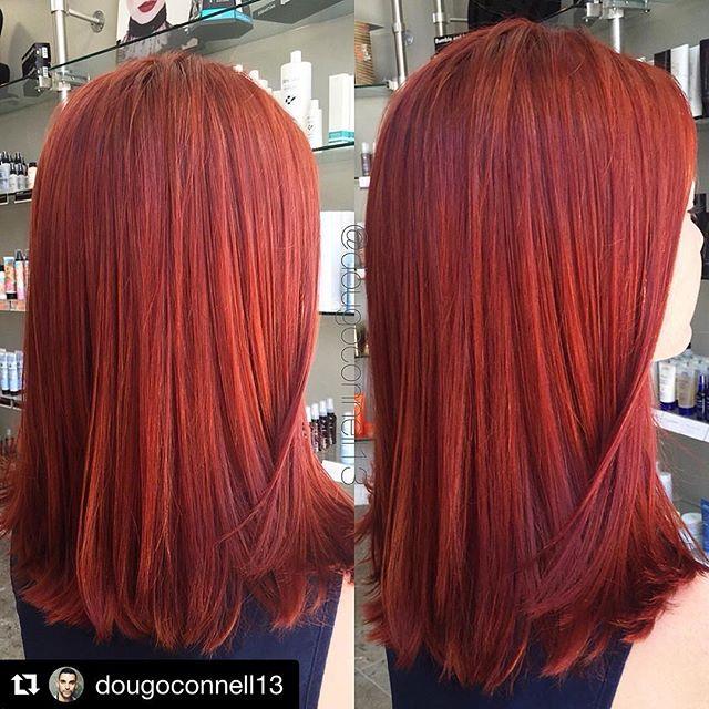 Hair by Doug @dougoconnell13 // #Repost @dougoconnell13 with @repostapp ・・・ Red hair. Don't care 🎨 #hair #haircut #hairking #hairlove #hairporn #hairpost #haircolor #hairstyle #hairtip #hairbydoug #hairbrained #hairstylist #balayage #balayagecolor #ombre #ombrehair #salon5150 #brea #trim #healthy #long #beautiful #modernsalon #btcpics #behindthechair #dougoconnell #angelofcolour #hairdressermagic