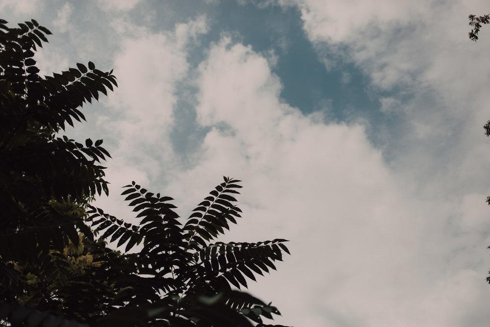 untitled-433.jpg