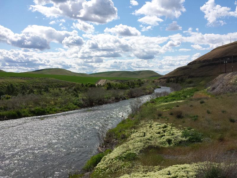 Tucannon River