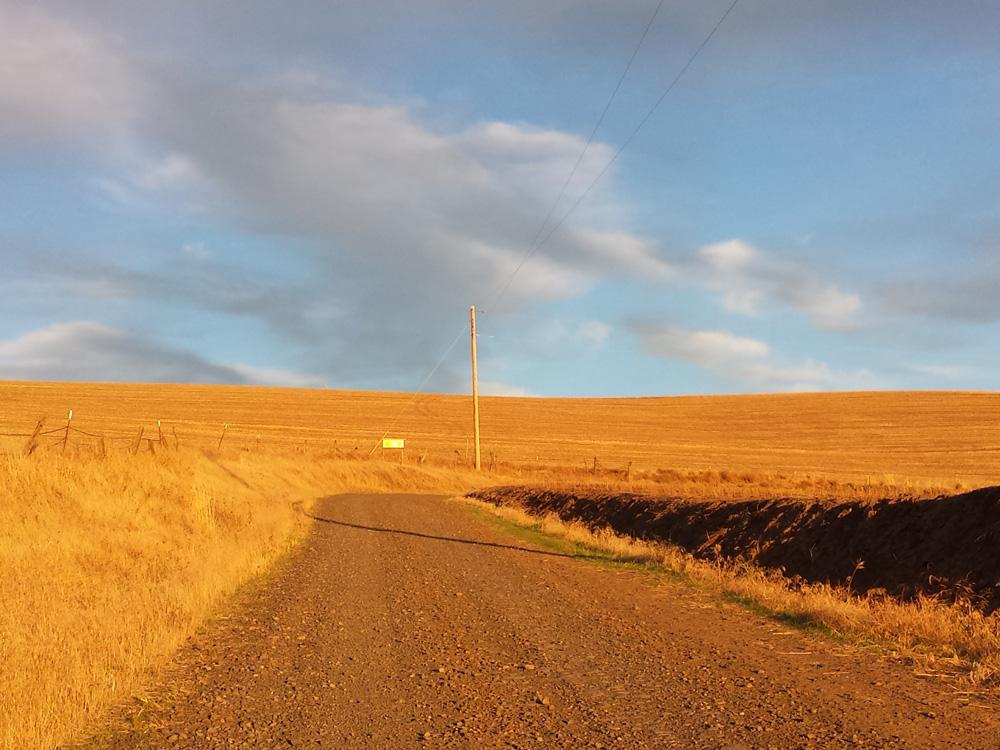 Lone Pine Road