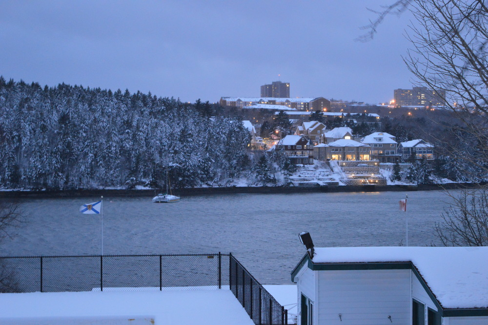 View of the arm in Halifax, NS. Taken with Nikon D3200