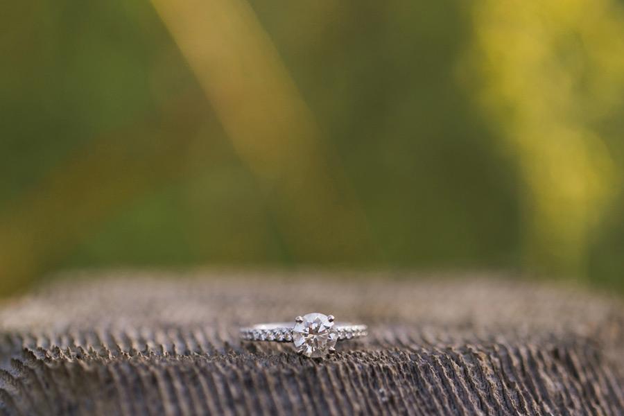north-pond-engagement-photos007