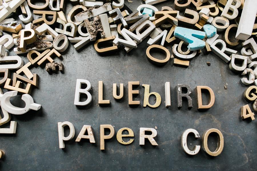 bluebird-paper-company-002