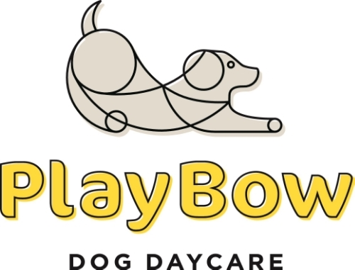 PlayBow Dog Day Care | Boarding | Training - San Francisco & Daly City