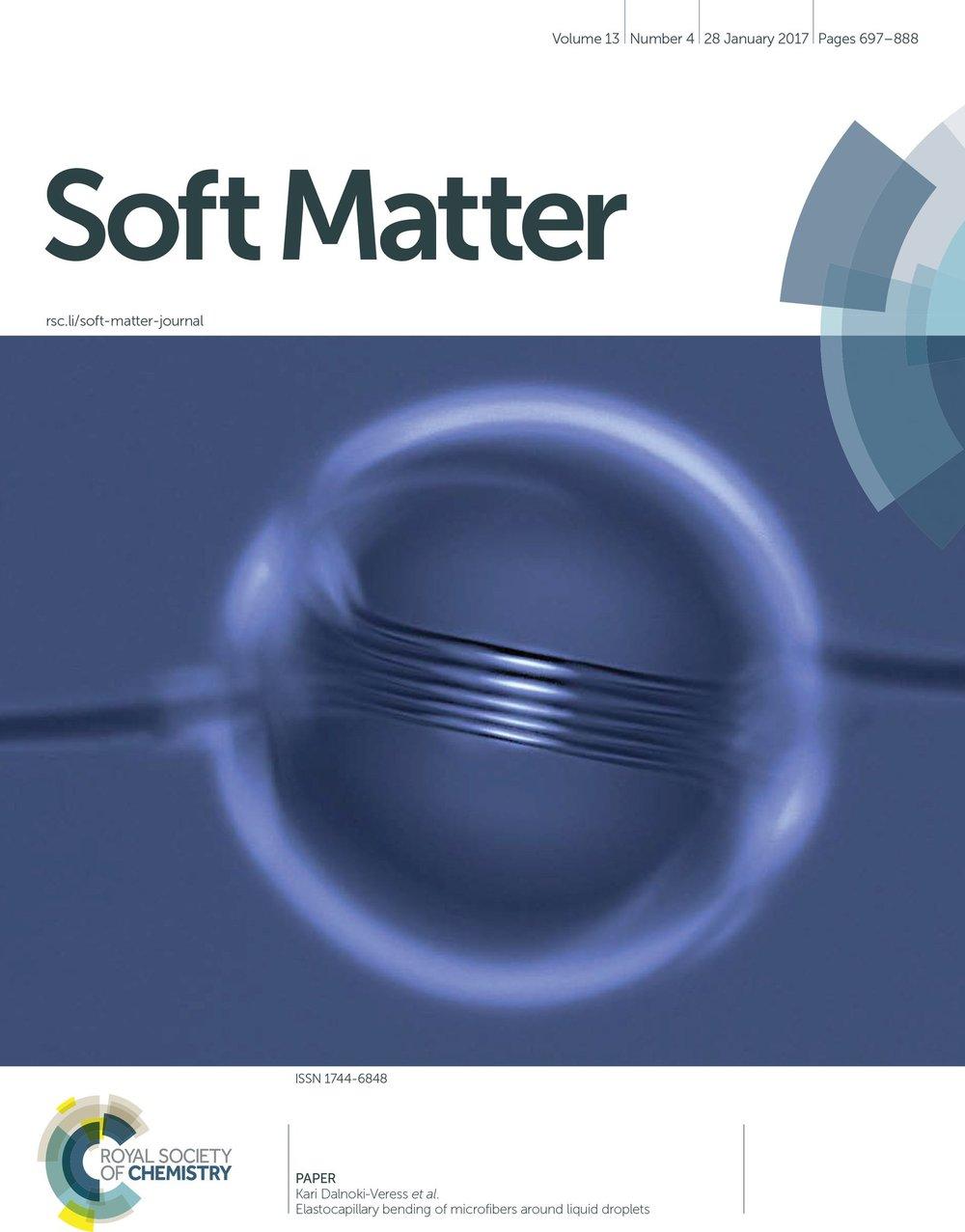 SM coils cover.jpg