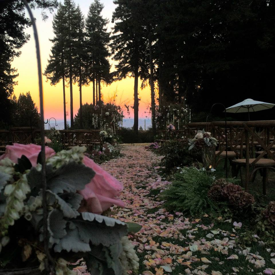 The Mountain Lodge - 12 Redwood Wedding Venues in the Bay Area — Tip Top Planning