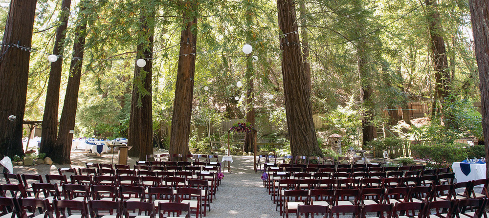 12 Redwood Wedding Venues In The Bay Area Tip Top Planning