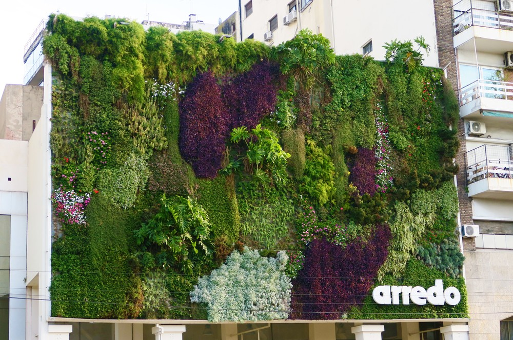 Living Wall - Buenos Aires
