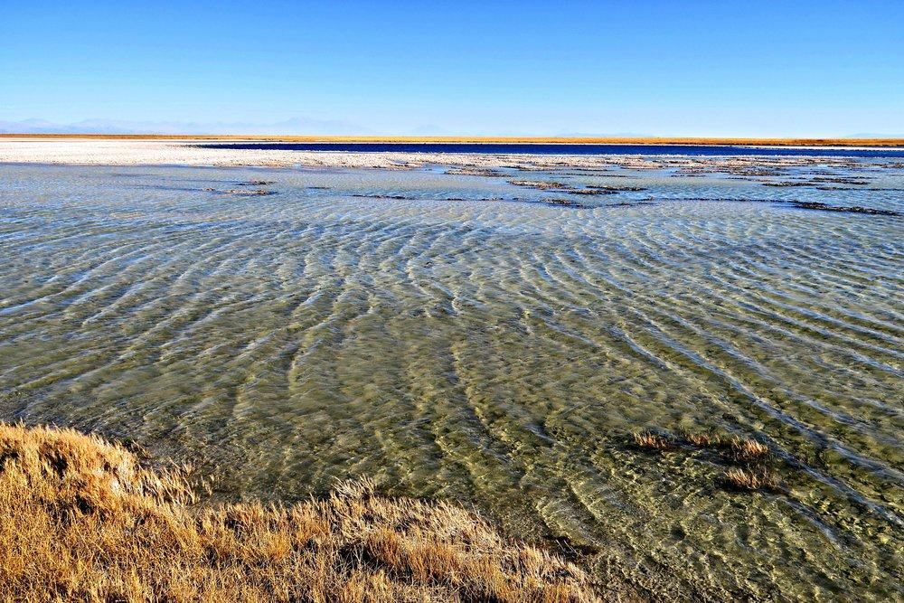 Cejar Lagoons - Salt Lagoon - San Pedro de Atacama - Atacama Desert - Tip Top Planning