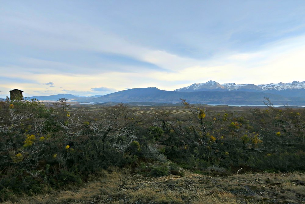 7 Different Day Trips in and Around Torres del Paine - Patagonia, Chile - Milodon Cave - Tip Top Planning