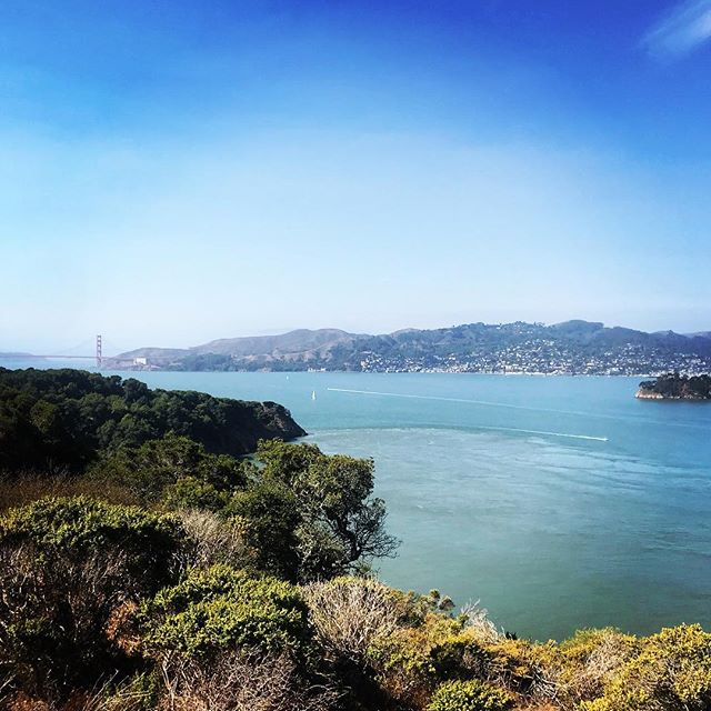 😎Gorgeous day for a hike . . . . #dabay #sunnyseptember #indiansummer #sanfrancisco #angelisland #adventurehuntress