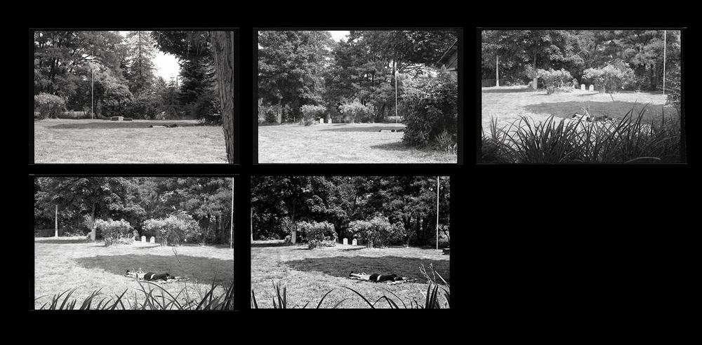 Sequence of photos