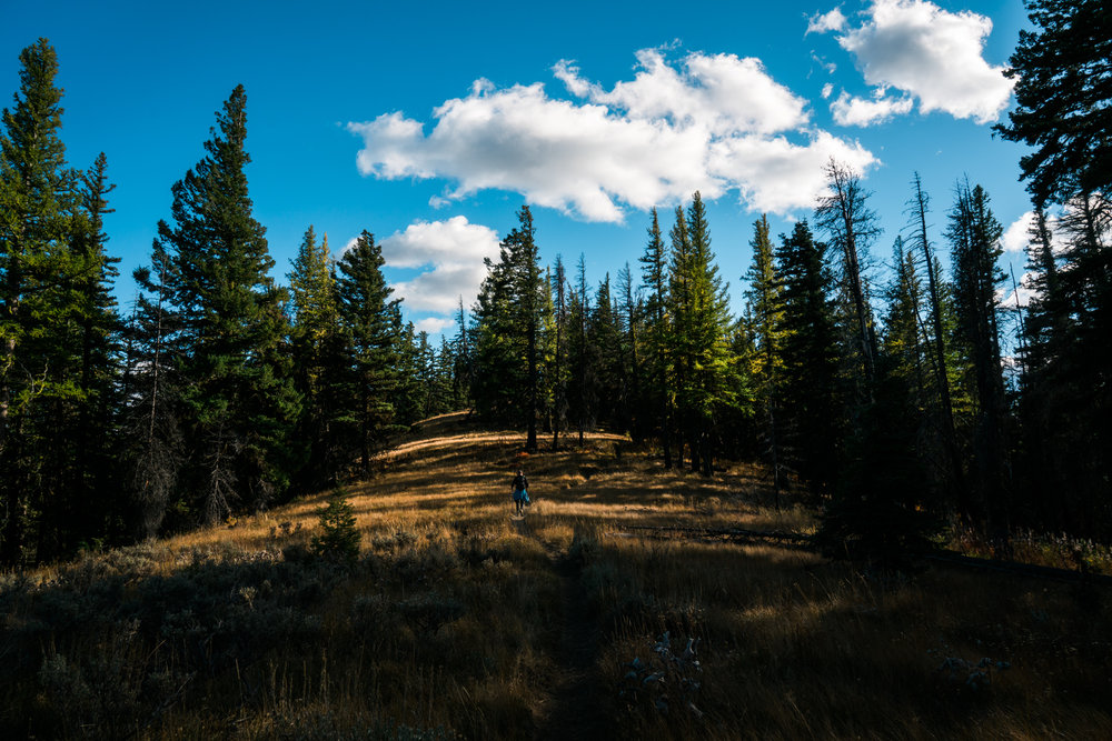 97 Ridge Hike (SM)-00913.jpg