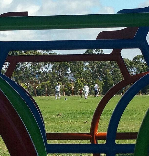 The Golden Wattle Park / Mirnu Wirra (Park 21W) photo album