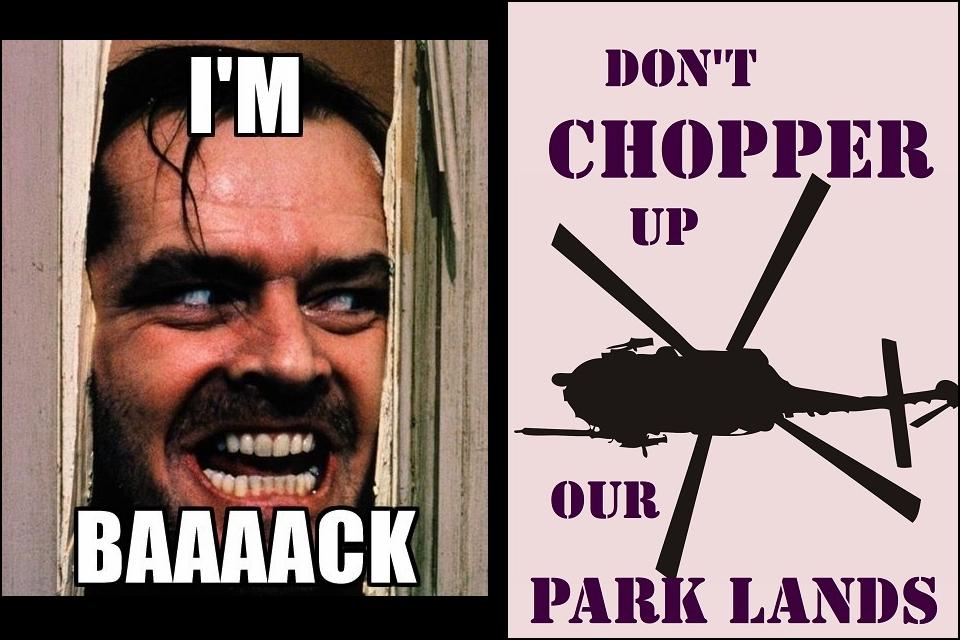 Chopper back.jpg
