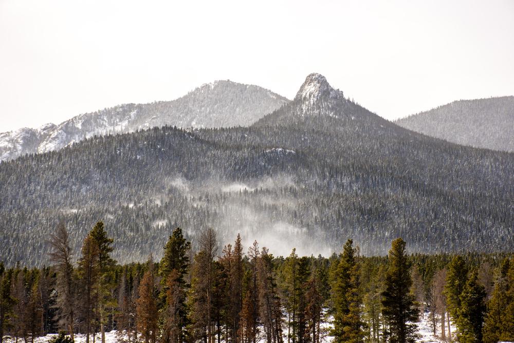 Lily Mountain-21.jpg
