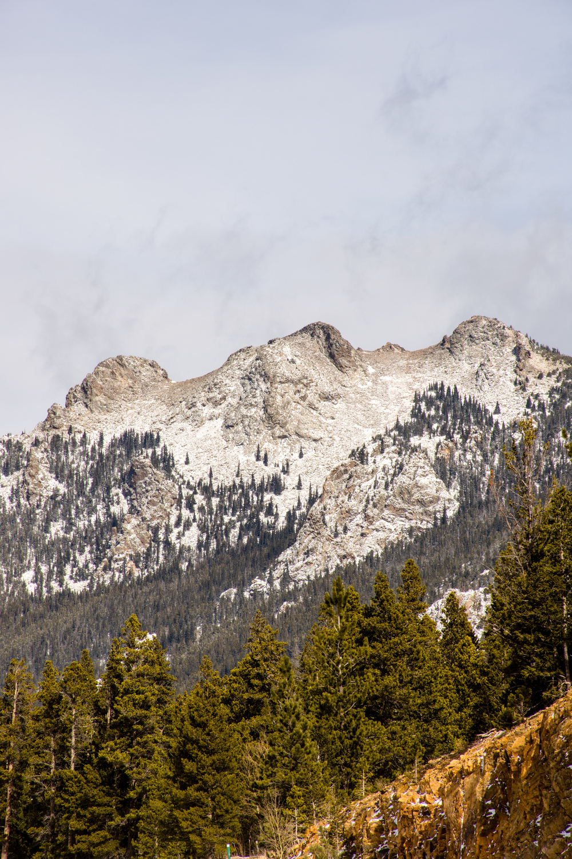 Lily Mountain-17.jpg