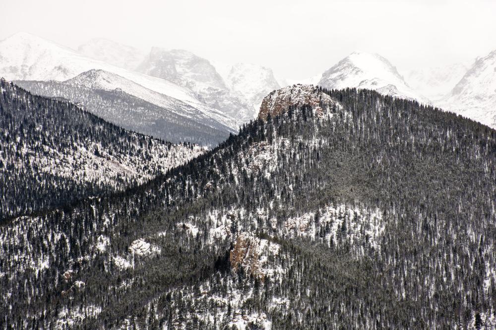Lily Mountain-209.jpg