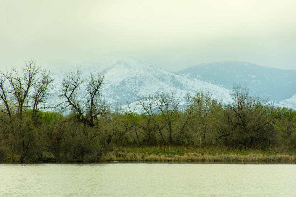 Sawhill Ponds-8.jpg