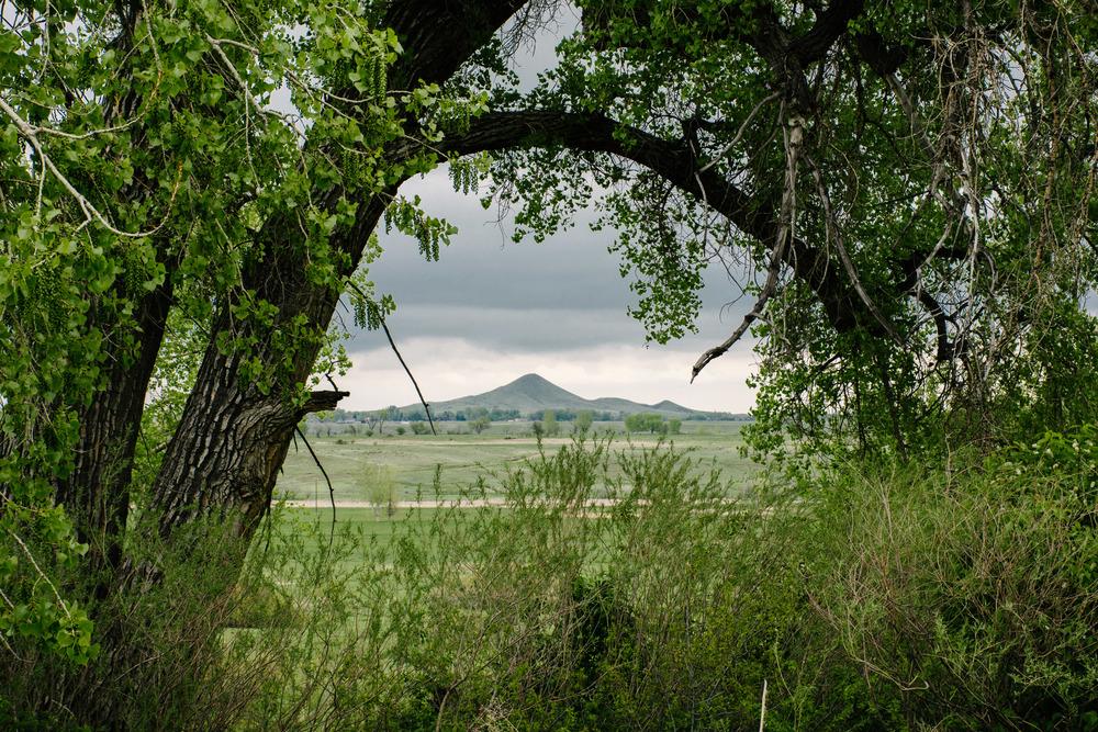 Eagle Trail-194.jpg