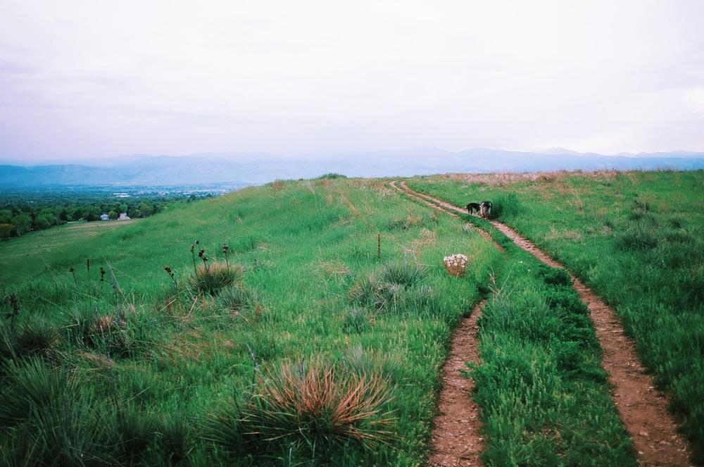 E Boulder Trail Flatirons.JPG