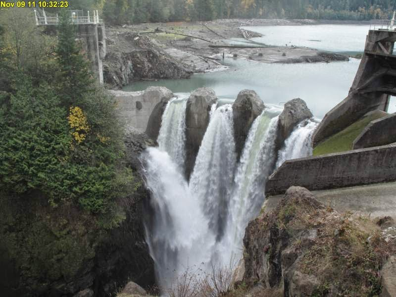 The Elwha Dam removal, begun in September of 2011, was completed in August 2014. It was the largest dam removal in US history. The river is projected to return to pre-dam conditions within 15-20 years, which is good news not only for fish populations, but for the entire ecosystem.