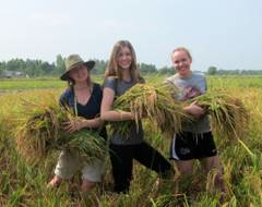 UM Climate Change Studies students doing field work (literally...) in Vietnam