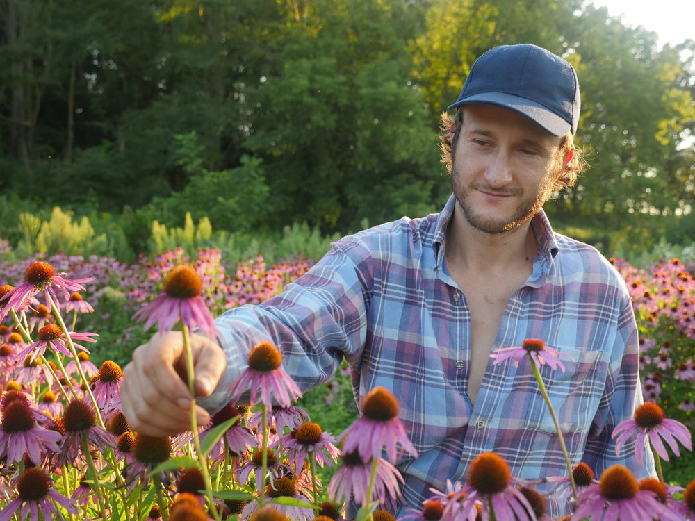 tony with cone flower.JPG