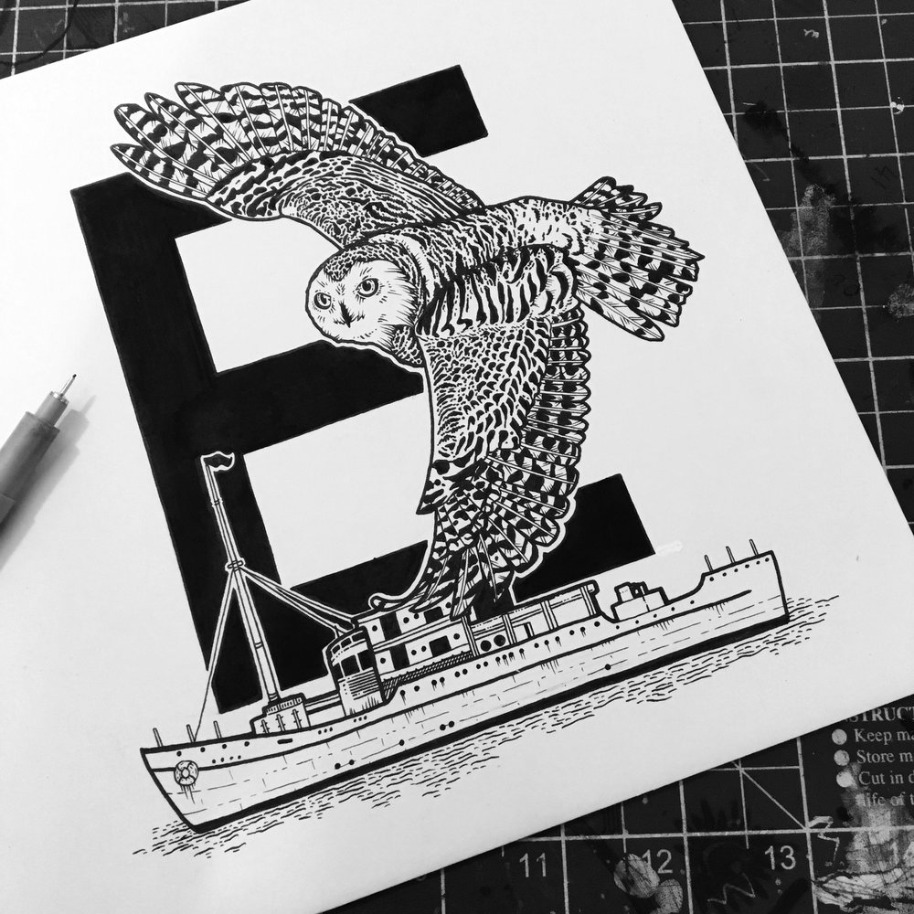 Eros the Snowy Owl - in 1950 he became exhausted and fell on the deck of HMS Eros off the Azores.