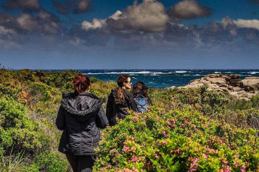 Margaret River Walking Tours Cape to Cape Edgewalkers