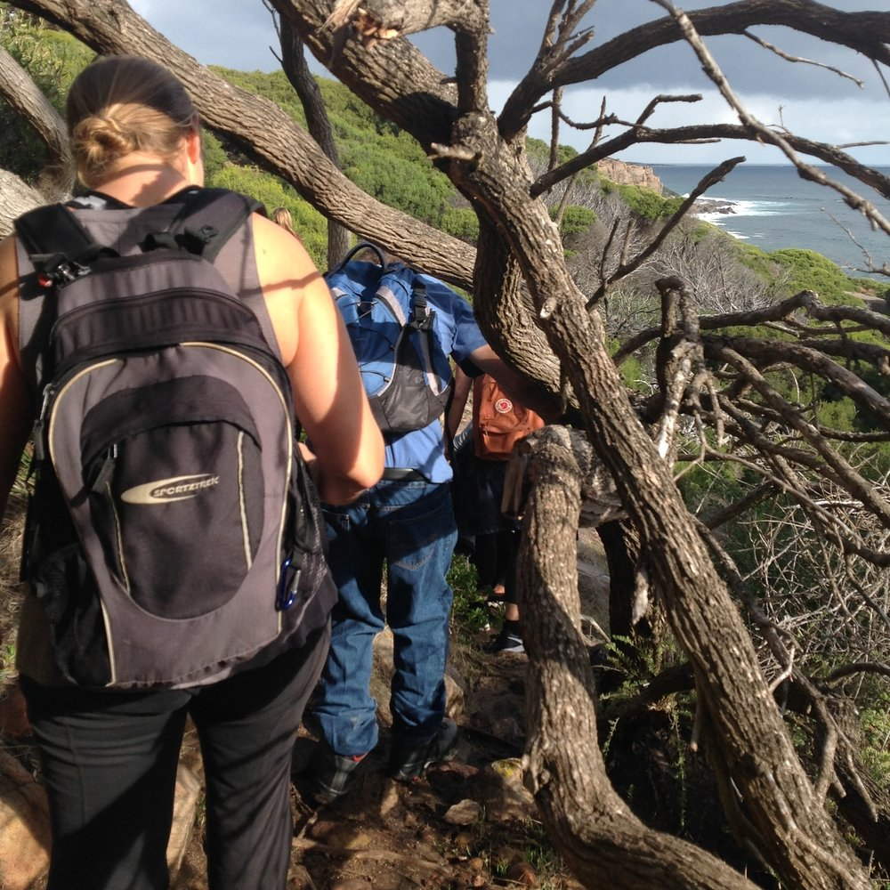 Wilyabrup Cliffs Cape to Cape End to End Guided Walk