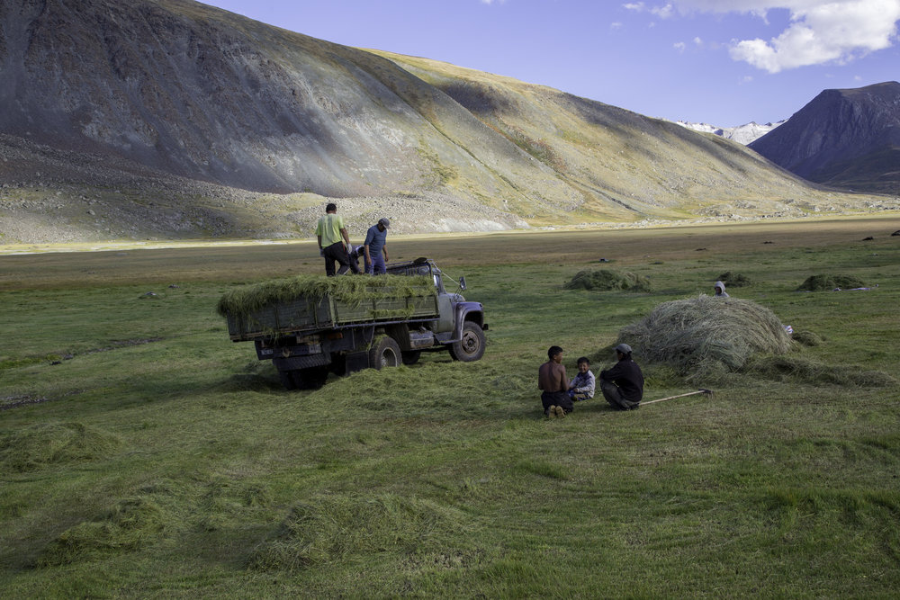 Tavan Bogd National Park - Nomads preparing for winter