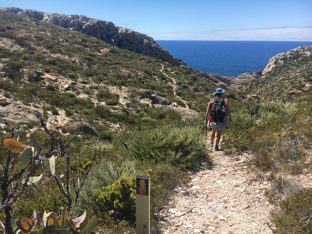 The Hakea Trail - Returning from Quoin Head