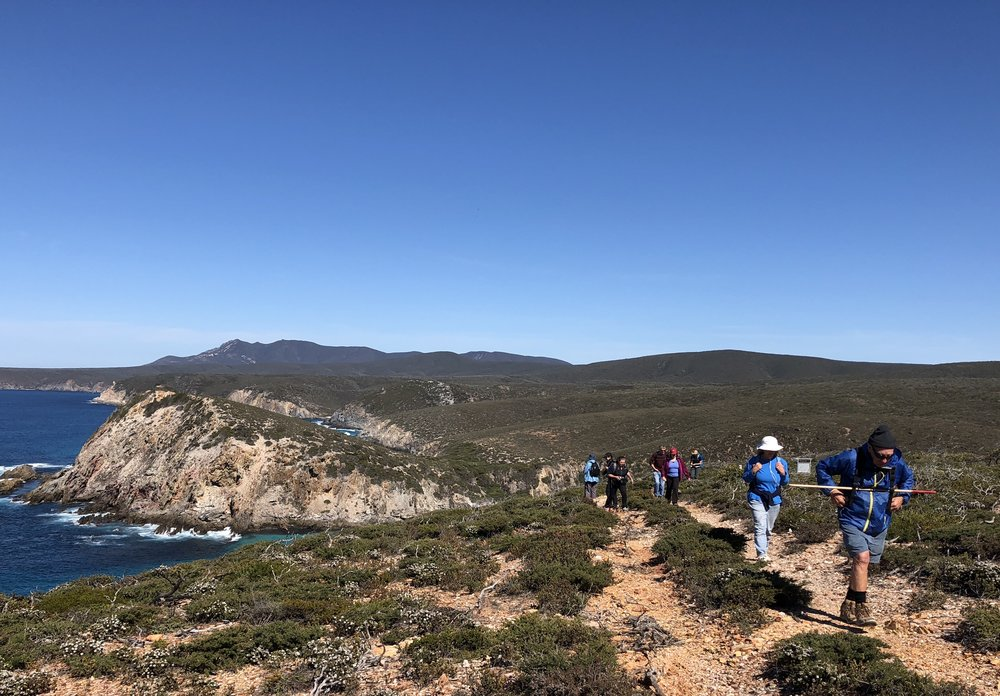 Quoin Head in the background - walking the Hakea Trail in the  Fitzgerald River National Park , Sept 2018 - huge highlight!