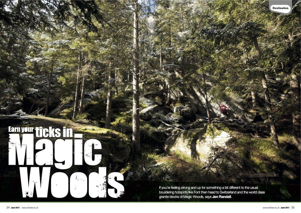 24-31_Magic Woods_2.jpg
