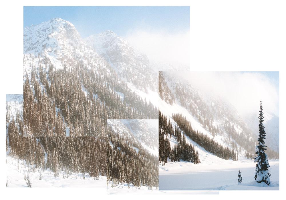Shadowfax Collage.jpg